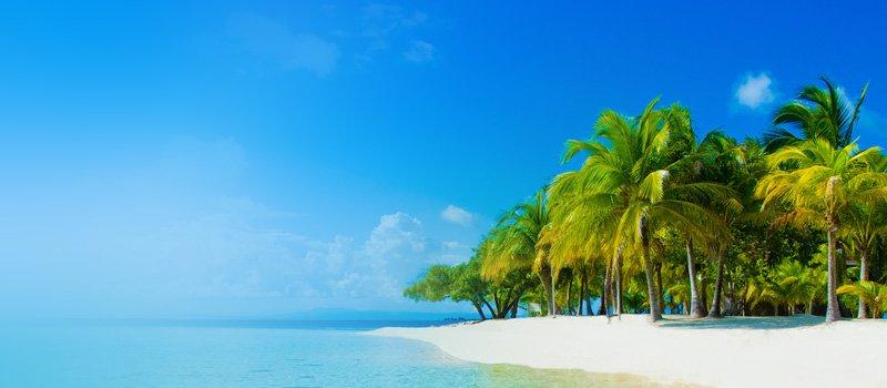 Removals to British Virgin Islands