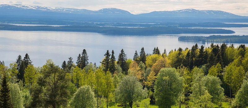 Part Load Removals to Sweden