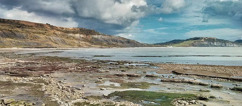Removals to Lyme Regis